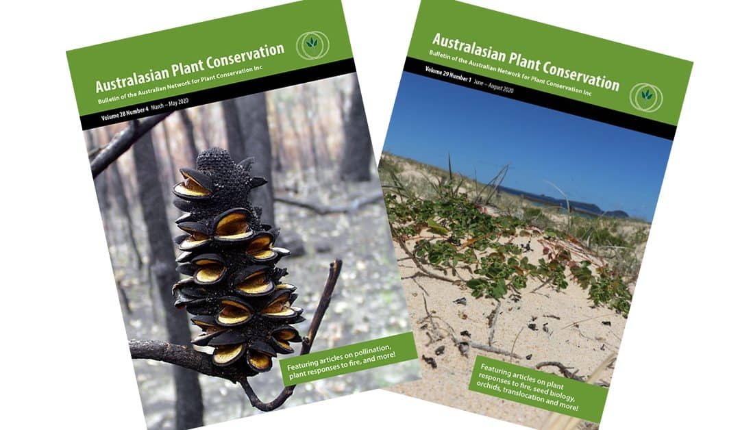 Call for submissions: Australasian Plant Conservation articles – due 1 November 2020
