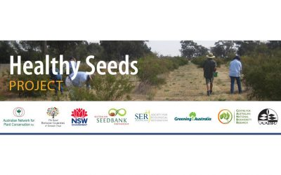 Healthy Seeds Project  November Update
