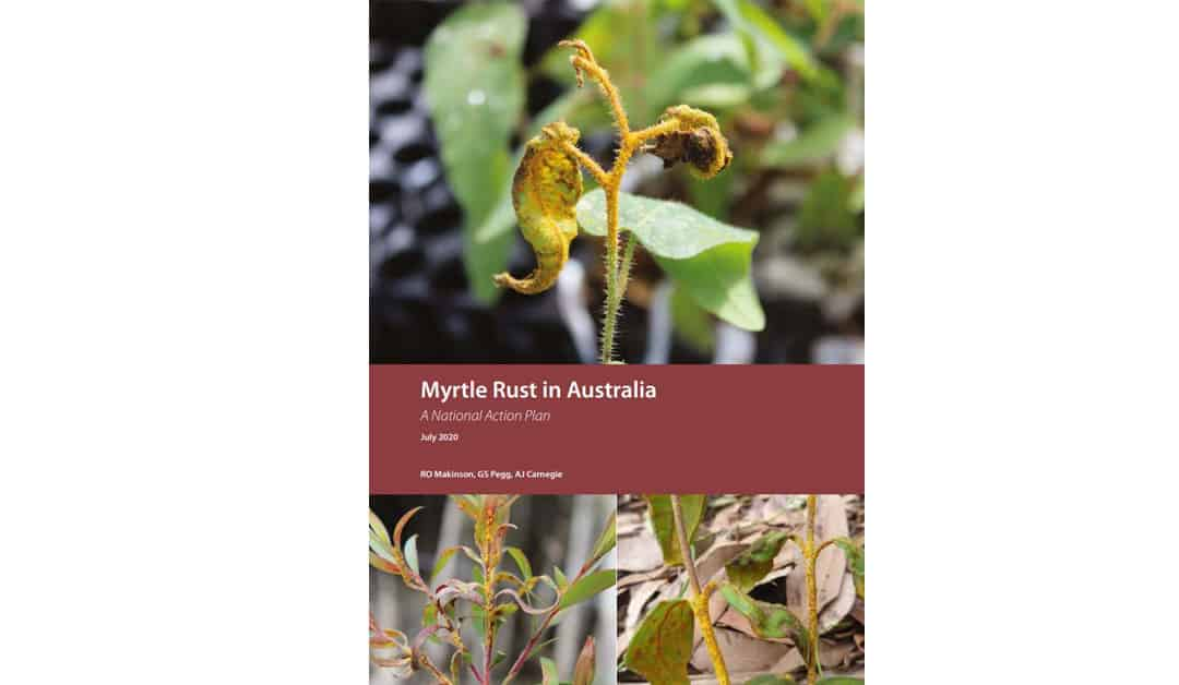 Myrtle Rust in Australia – a National Action Plan