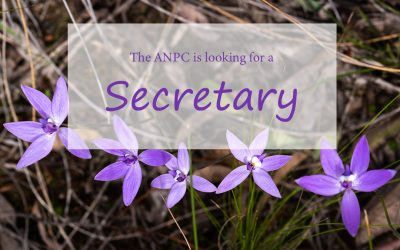 Looking to fill Secretary position
